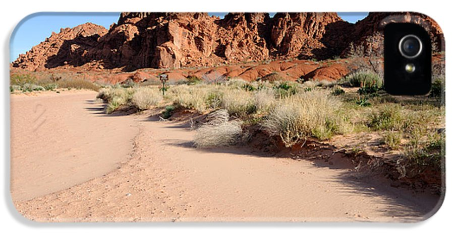 Valley IPhone 5 / 5s Case featuring the photograph Valley Of Fire Wash by Gary Whitton