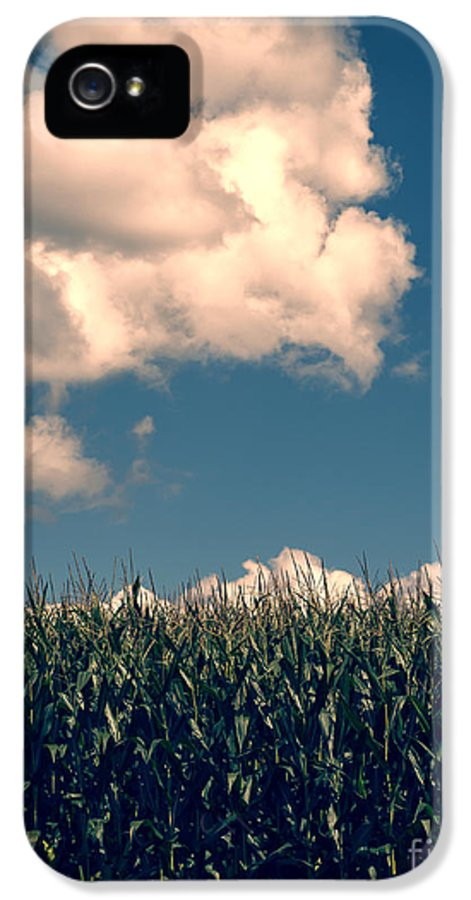Cloud IPhone 5 Case featuring the photograph Vermont Cornfield by Edward Fielding