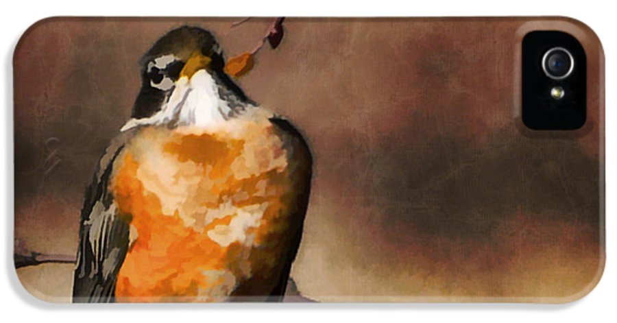 Waiting For Spring IPhone 5 / 5s Case featuring the painting Waiting For Spring by Jordan Blackstone