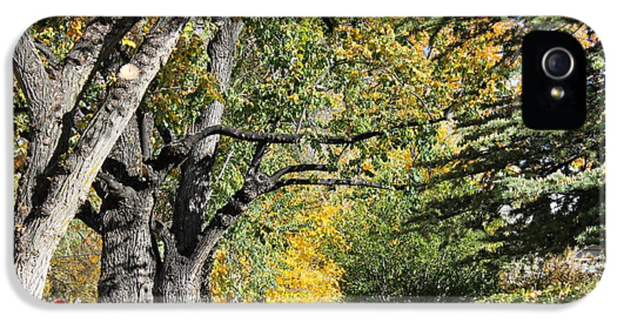 Prescott IPhone 5 Case featuring the photograph Walking Down Senators Highway by Pamela Walrath