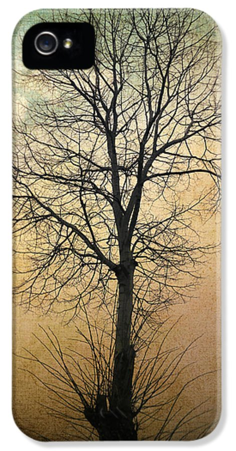 Tree IPhone 5 Case featuring the photograph Waltz Of A Tree by Taylan Apukovska