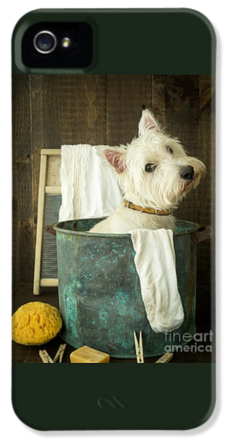 Dog IPhone 5 Case featuring the photograph Wash Day by Edward Fielding