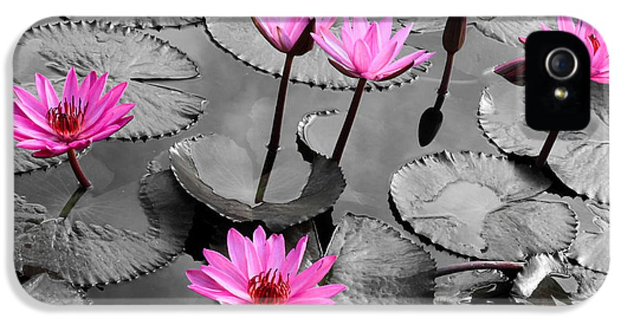 Water IPhone 5 Case featuring the photograph Water Lily Lotus Flower And Leaves by Thanapol Kuptanisakorn