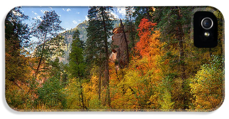 Fall IPhone 5 Case featuring the photograph West Fork Wonders by Saija Lehtonen