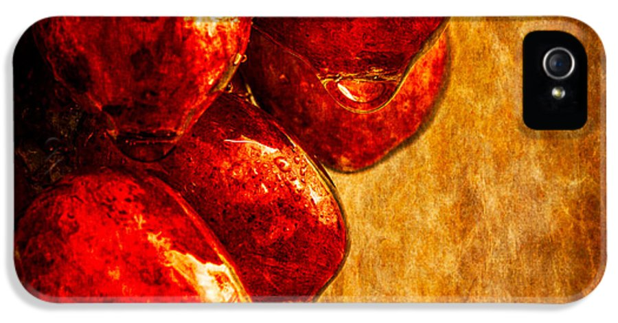 Rain IPhone 5 Case featuring the photograph Wet Grapes Three by Bob Orsillo