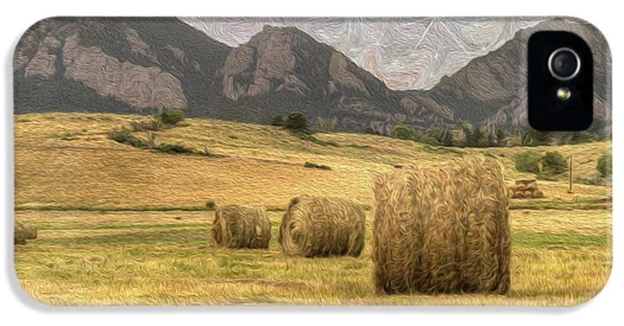 Agriculture IPhone 5 Case featuring the photograph What The Hay by Juli Scalzi