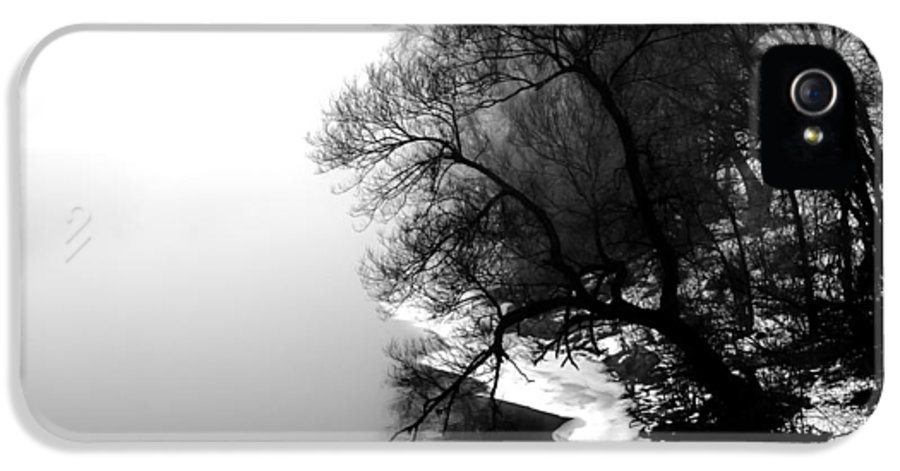 Tree IPhone 5 Case featuring the photograph Whisper by Bob Orsillo