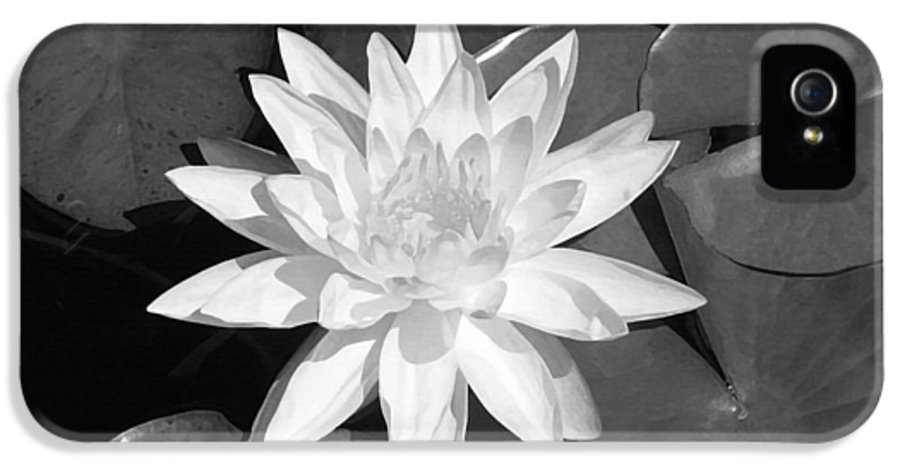 White Lotus IPhone 5 Case featuring the painting White Lotus 2 by Ellen Henneke