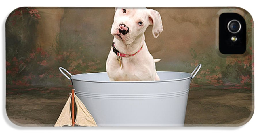 Dog IPhone 5 Case featuring the photograph White Pitbull Puppy Portrait by James BO Insogna