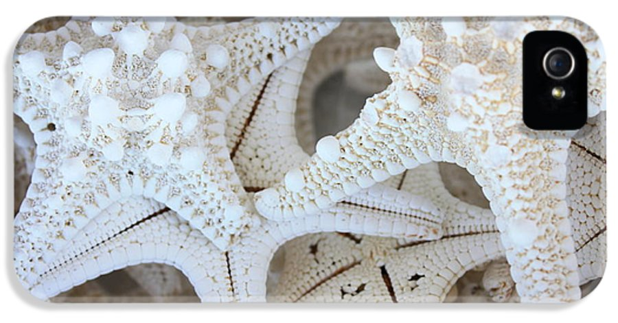 White IPhone 5 Case featuring the photograph White Starfish by Carol Groenen