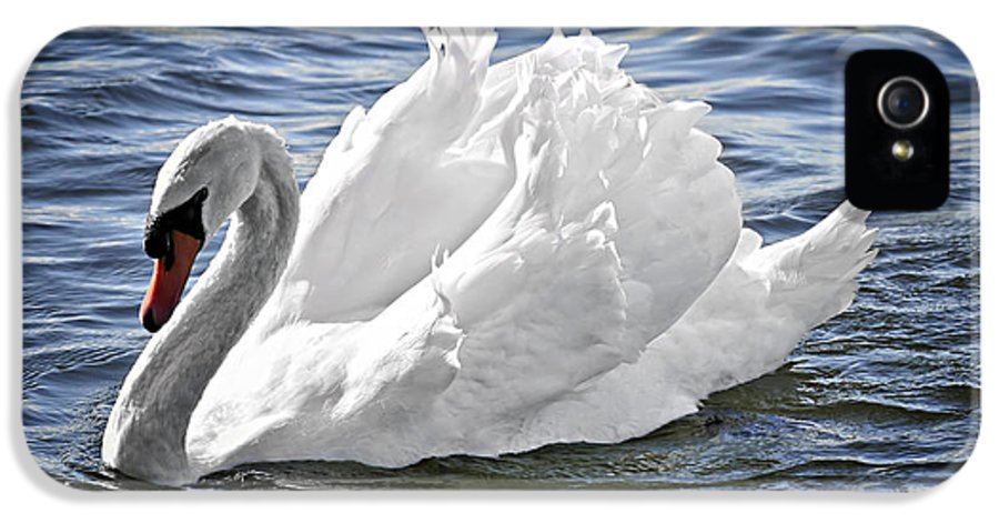 Swan IPhone 5 Case featuring the photograph White Swan On Water by Elena Elisseeva