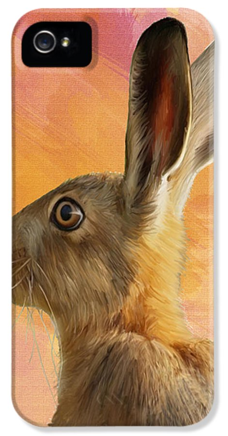 A Painted Hare IPhone 5 Case featuring the painting Wild Hare by Tanya Hall