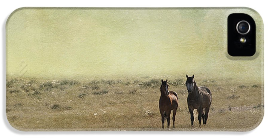 America IPhone 5 Case featuring the photograph Wild Pair by Juli Scalzi