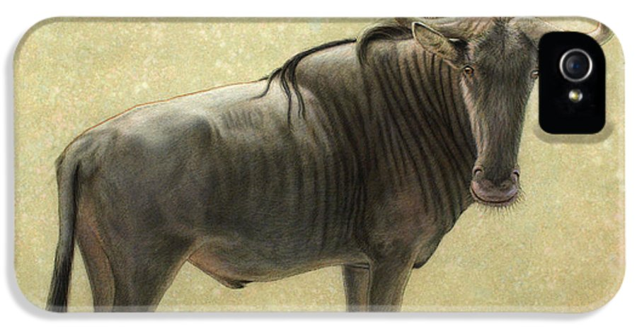 Wildebeest IPhone 5 Case featuring the painting Wildebeest by James W Johnson