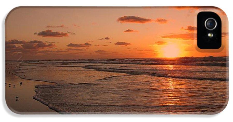 Beach IPhone 5 Case featuring the photograph Wildwood Beach Sunrise II by David Dehner