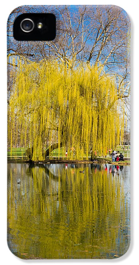 Willow IPhone 5 Case featuring the photograph Willow Tree Water Reflection by Matthias Hauser
