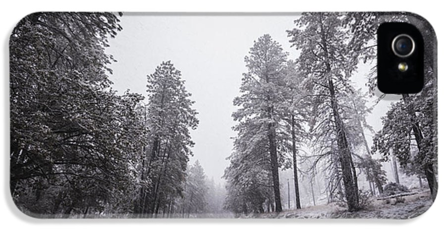 Winter Storm IPhone 5 Case featuring the photograph Winter Driven by Anthony Citro