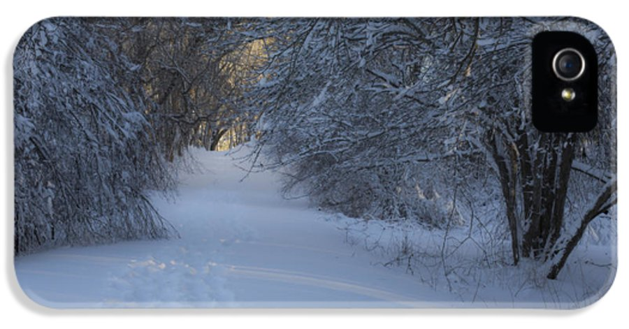 Andrew Pacheco IPhone 5 / 5s Case featuring the photograph Winter Hike by Andrew Pacheco