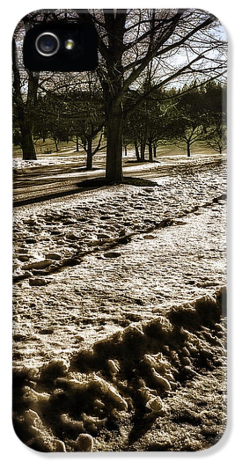 Winter IPhone 5 Case featuring the photograph Winter In The Berkshires by Madeline Ellis
