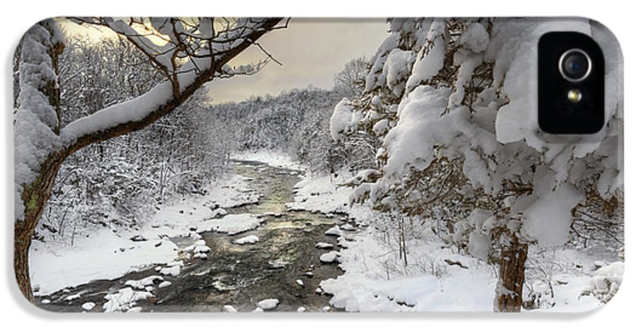 Snow Covered Treee IPhone 5 Case featuring the photograph Winter Morning by Bill Wakeley