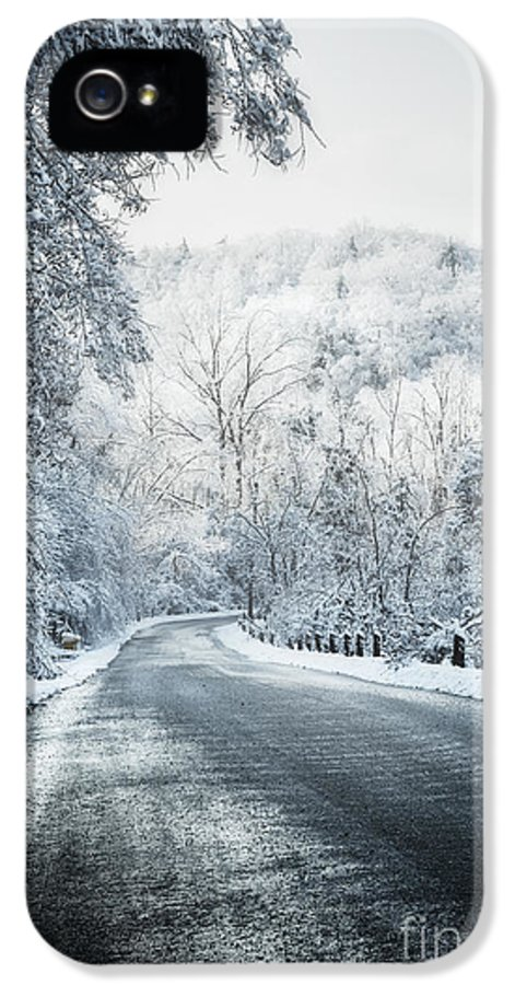 Winter IPhone 5 Case featuring the photograph Winter Road In Forest by Elena Elisseeva