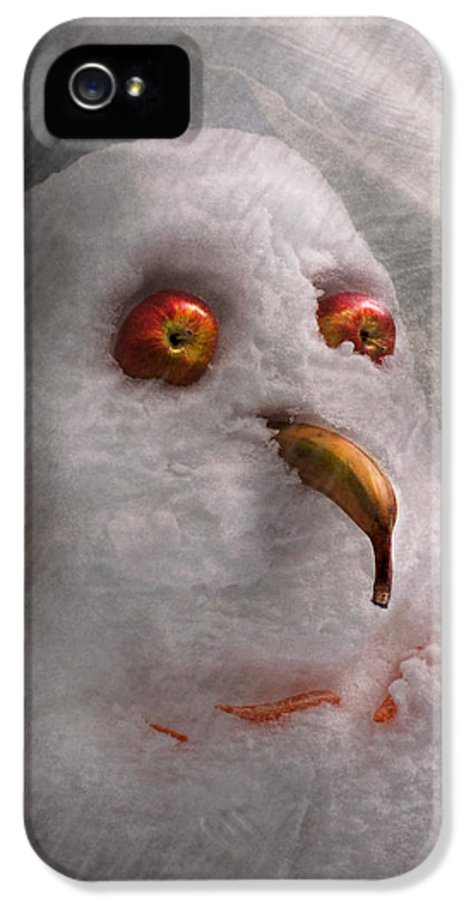 Winter IPhone 5 Case featuring the photograph Winter - Snowman - What Are You Looking At by Mike Savad