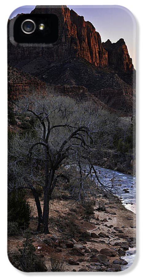 Winter Watchman IPhone 5 Case featuring the photograph Winter Watchman by Chad Dutson