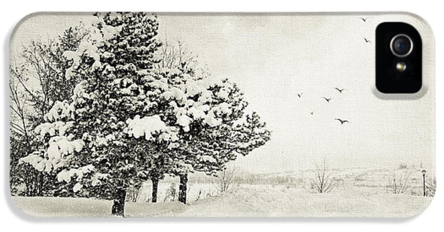 Winter IPhone 5 Case featuring the photograph Winter White by Julie Palencia