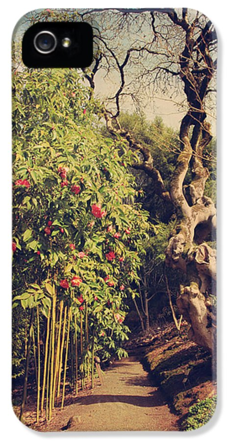 Uc Berkeley Botanical Garden IPhone 5 Case featuring the photograph You'll Never Be Alone by Laurie Search