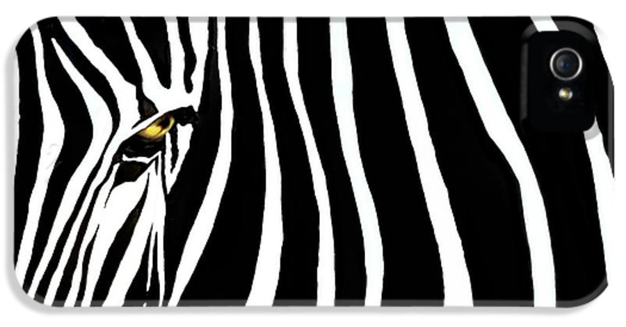Zebra IPhone 5 Case featuring the photograph Zebressence by Dan Holm