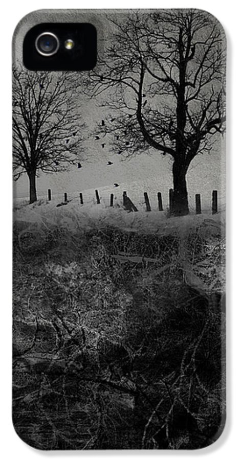 Trees IPhone 5 Case featuring the digital art Dark Roost by Ron Jones