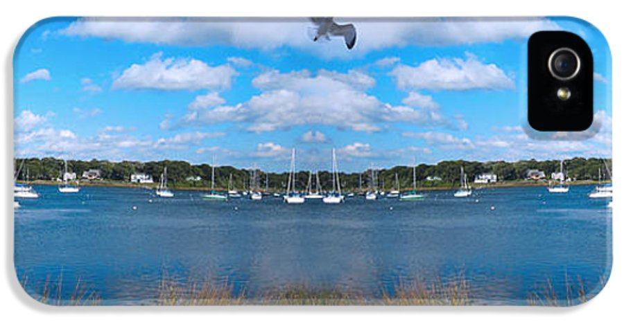 Marina Park IPhone 5 Case featuring the photograph Marina by Lourry Legarde