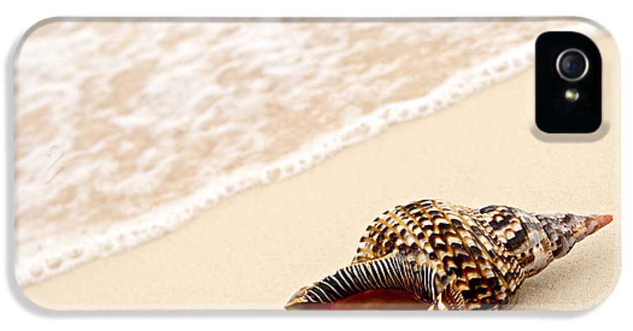 Seashell IPhone 5 Case featuring the photograph Seashell And Ocean Wave by Elena Elisseeva