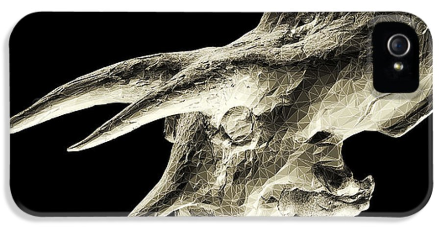 Fossilized IPhone 5 Case featuring the photograph Triceratops Dinosaur Skull by Smithsonian Institute