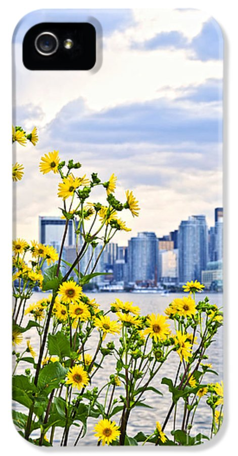 Toronto IPhone 5 Case featuring the photograph Toronto Skyline by Elena Elisseeva