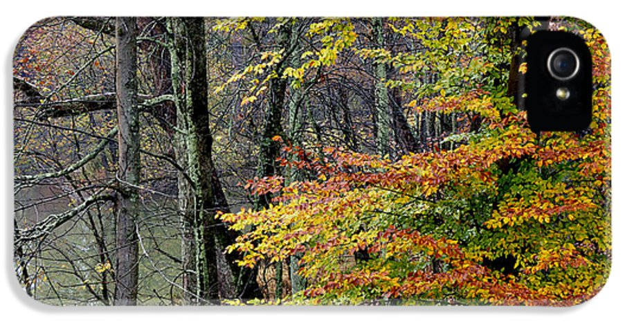 West Fork River IPhone 5 Case featuring the photograph Fall Along West Fork River by Thomas R Fletcher