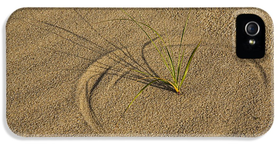 Beach IPhone 5 Case featuring the photograph A Compass In The Sand by Susan Candelario