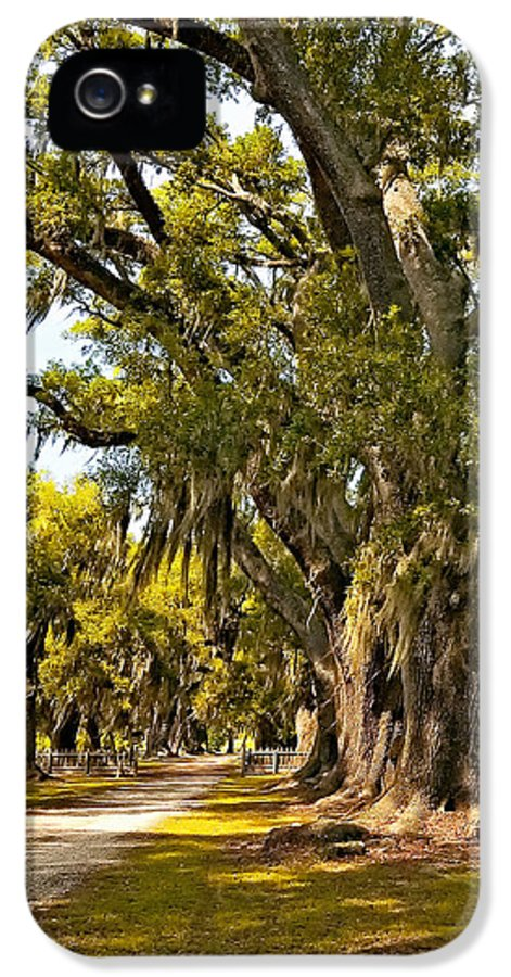 Evergreen Plantation IPhone 5 Case featuring the photograph A Stroll Through Time by Steve Harrington