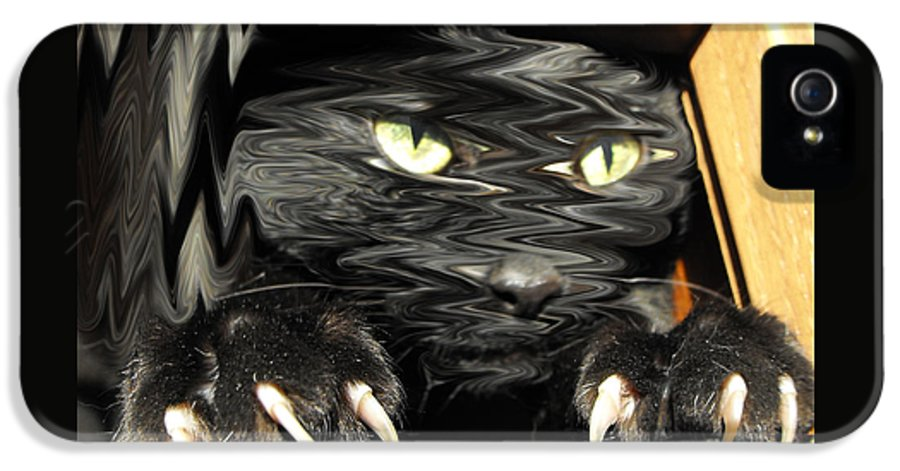 Black Cat IPhone 5 Case featuring the photograph Alice's Cat by Rebecca Margraf