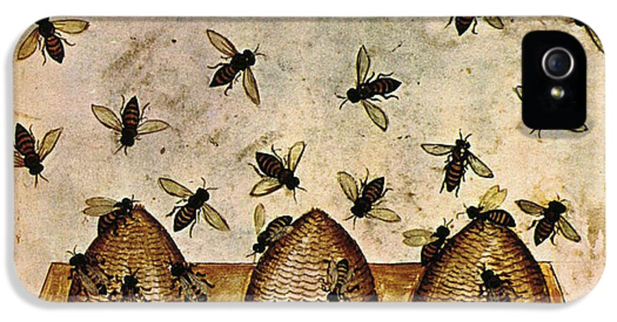 Agriculture IPhone 5 Case featuring the photograph Apiculture-beekeeping-14th Century by Science Source