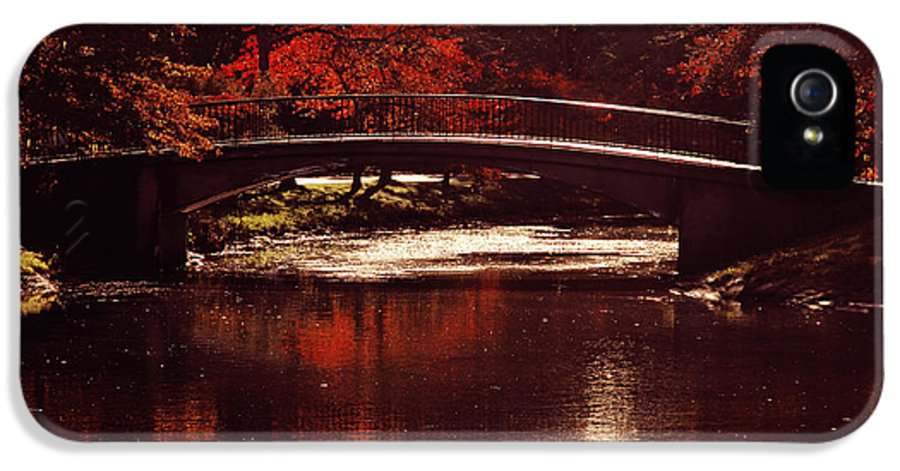 Boston IPhone 5 Case featuring the photograph Autumnal Sunshine by Dana DiPasquale