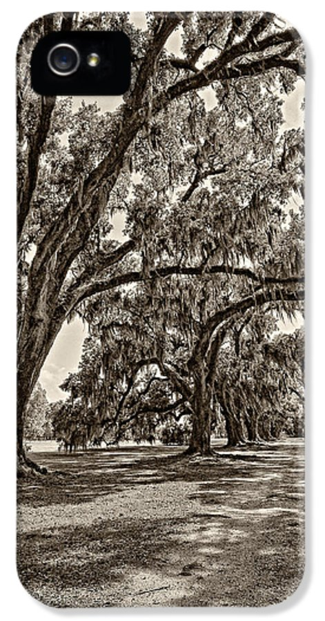 Evergreen Plantation IPhone 5 Case featuring the photograph Back To The Future Sepia by Steve Harrington