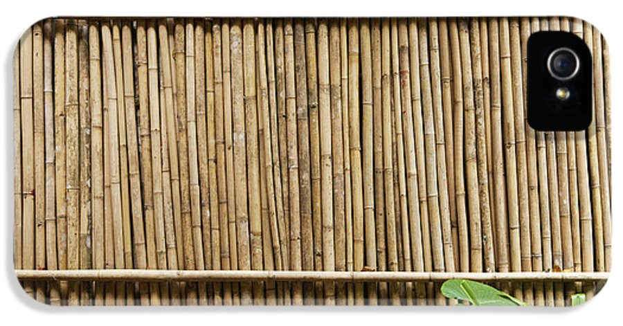 Architectural Detail IPhone 5 Case featuring the photograph Bamboo Fence by Don Mason