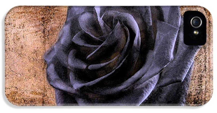 Rose IPhone 5 Case featuring the photograph Black Rose Eternal  by David Dehner