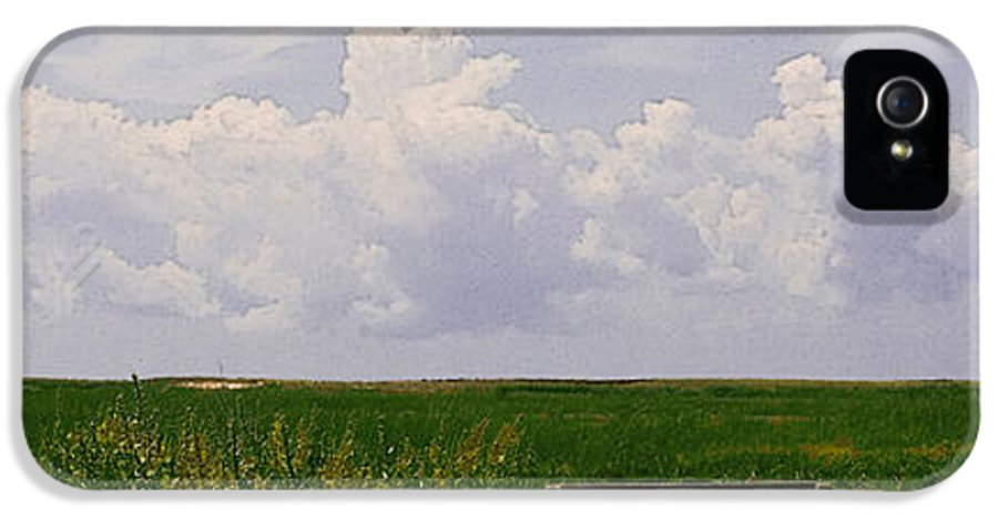 Landscape IPhone 5 Case featuring the photograph Cape Marsh by Michael Friedman