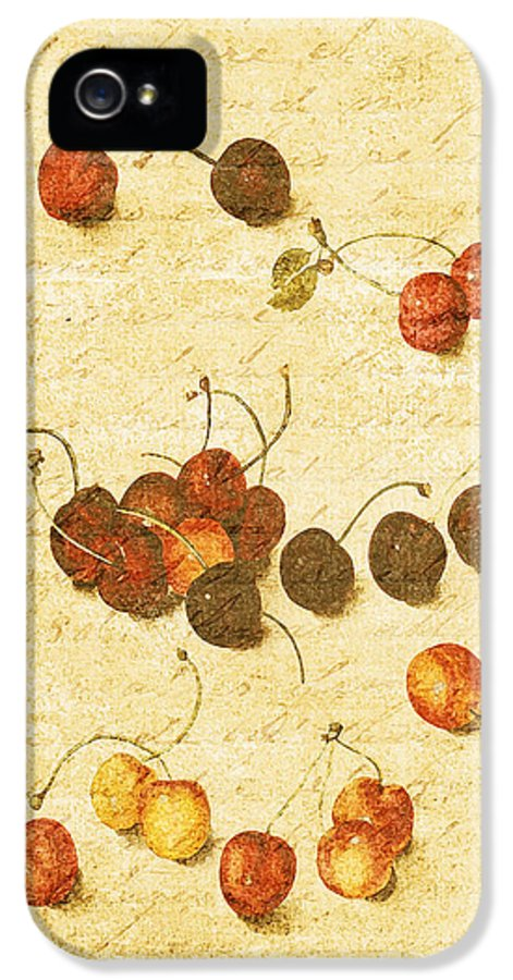 Vintage Botanical IPhone 5 Case featuring the photograph Cherries by Bonnie Bruno