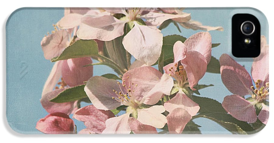Cherry Blossoms Photographs IPhone 5 Case featuring the photograph Cherry Blossoms by Kim Hojnacki