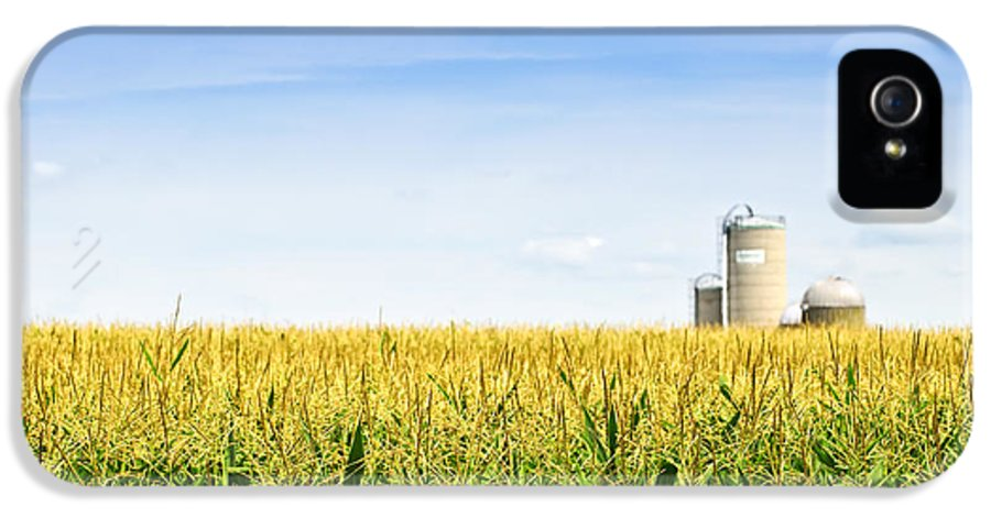 Agriculture IPhone 5 Case featuring the photograph Corn Field With Silos by Elena Elisseeva
