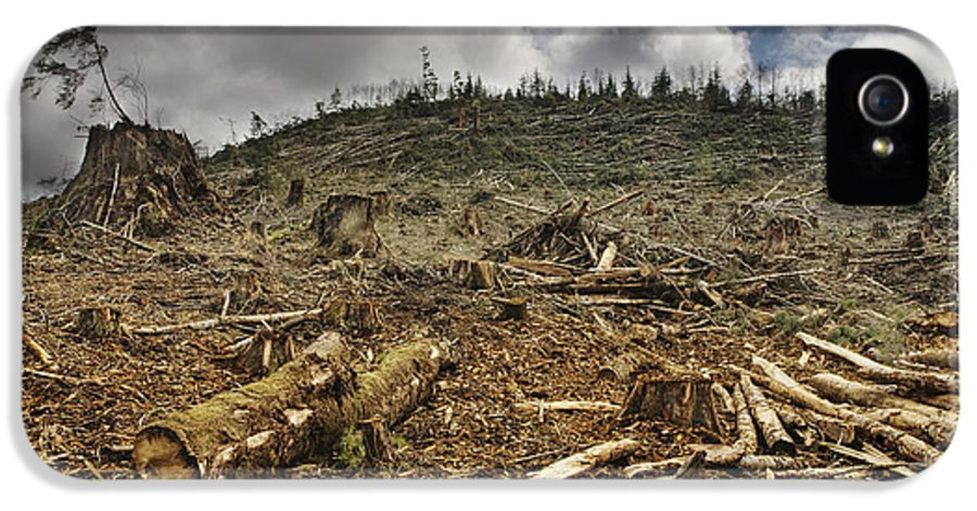 Bleak IPhone 5 Case featuring the photograph Deforested Area by Ned Frisk