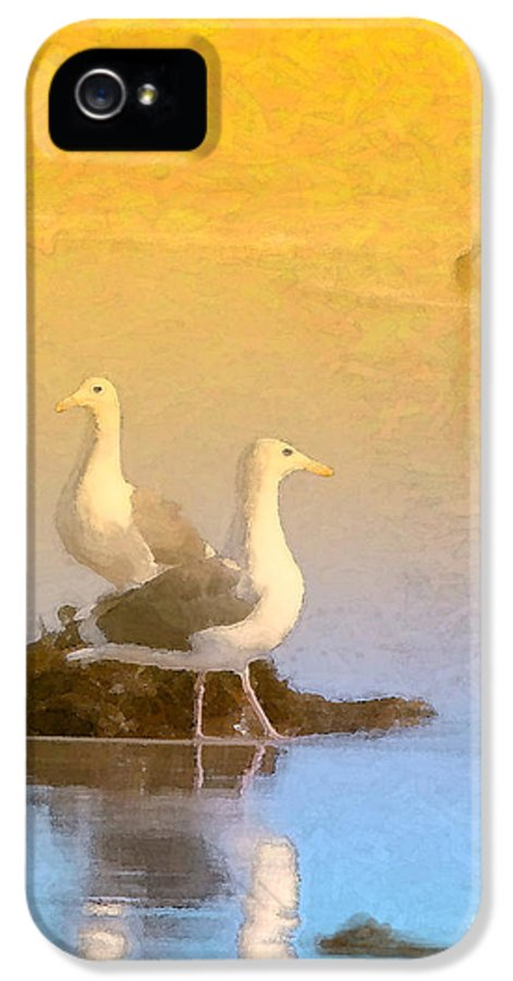 Seagull IPhone 5 Case featuring the photograph End Of The Day by Betty LaRue